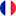 French Flag Icon